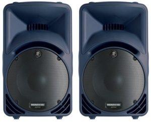 800W Mackie SRM450 V2